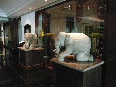ホワイト・エレファント・タイ・レストランの写真