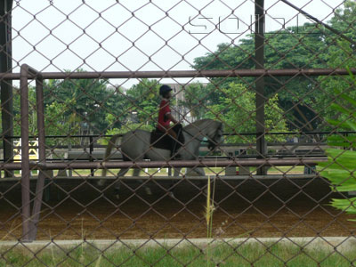 Nonthaburi Equestrian Sports Club