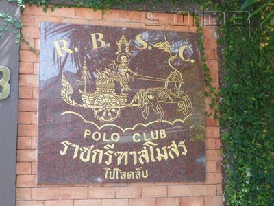 RBSCポロクラブの写真