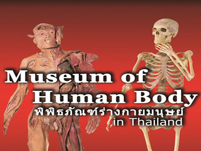 A photo of Museum of the Human body