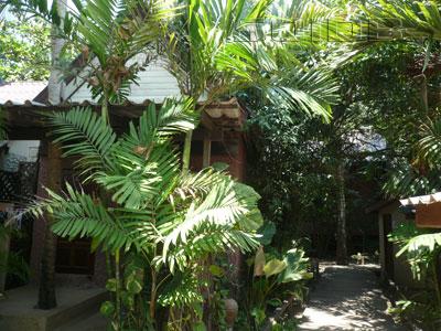 A photo of 15 Palms Resort