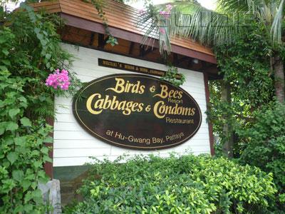 ภาพของ Birds & Bees Resort