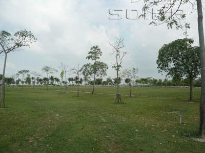 ภาพของ สวนสาธารณะเมืองพัทยา - ถ.ชัยพฤกษ์2