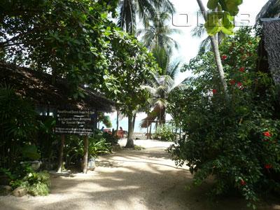 A photo of Haadgruad Beach Resort