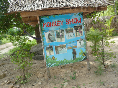 ภาพของ Monkey Show - Phaeng Waterfall