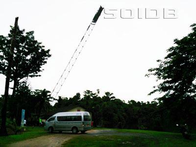 ジャングル・バンジー・ジャンプの写真