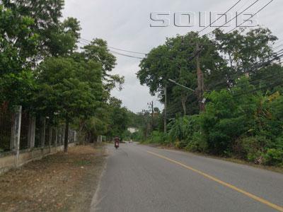 A photo of Trang Road