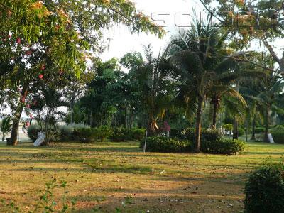 ภาพของ สวนเฉลิมพระเกียรติ