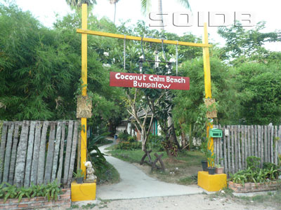 ココナッツ・カーム・ビーチ・バンガローの写真