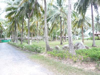 A photo of Am Samui Resort Taling Ngam
