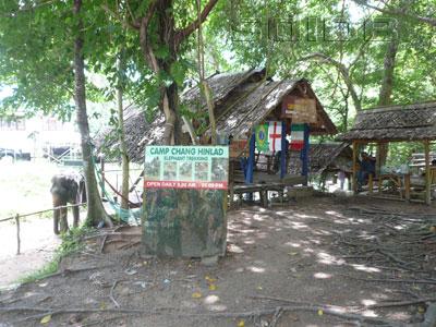 キャンプ・チャン・ヒンラッド・エレファント・トレッキングの写真