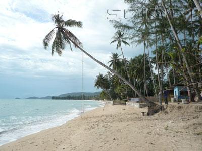 ภาพของ ลิปะน้อย - เกาะสมุย
