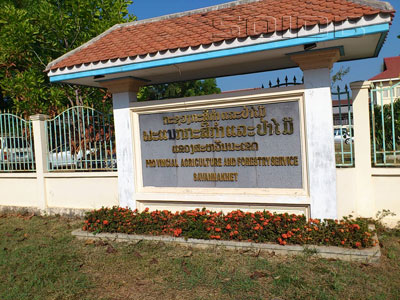 A photo of Provincial Agriculture and Forestry Service Savannakhet