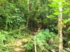 A thumbnail of Pou Kham Cave: (4). Land Feature