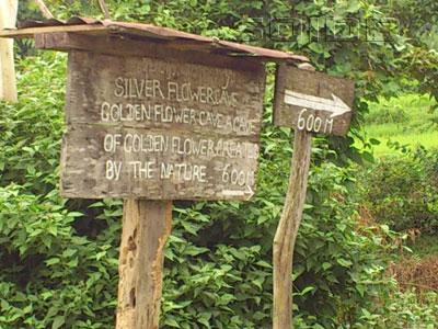ภาพของ Golden Flower Cave (Signboard)